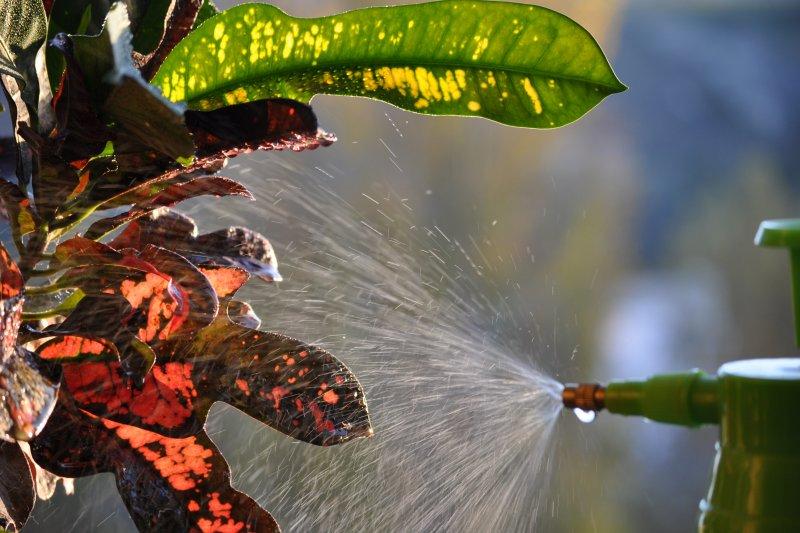 Что такое мочевина и зачем нужна обработка мочевиной