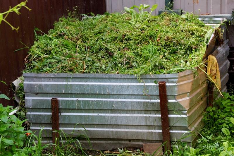 Как правильно приготовить садовый компост из отходов