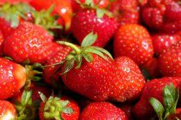 Не сладкая ягода. Что влияет на вкус клубники?