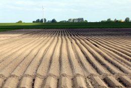 НПО «Мелиоратор» сельскохозяйственная техника от производителя