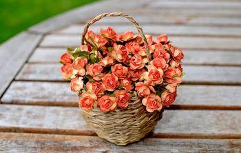 Искусственные растения для декора: основные виды